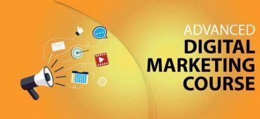 Professional Digital Marketing Training